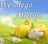 Wesołego Alleluja!!!